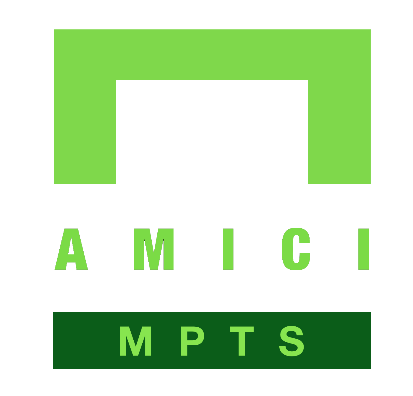 Amici Enterprises LLC